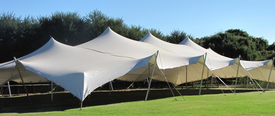 Stretch Tents & Freeform Tents